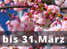 Mandelblüten-Rabatt Juristische Fachseminare