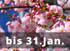Mandelblüten-Rabatt-Fachanwalt-Fortbildung